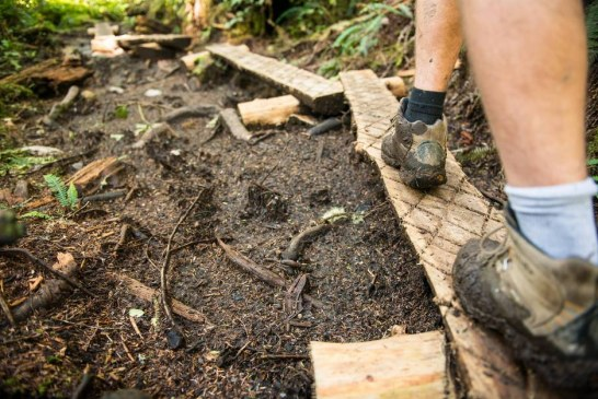Testing your limits on Vancouver Island's West Coast Trail